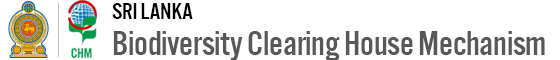 Clearing House Mechanism – Sri Lanka